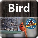 wild bird products